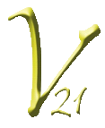 Vision 21 Concepts Inc